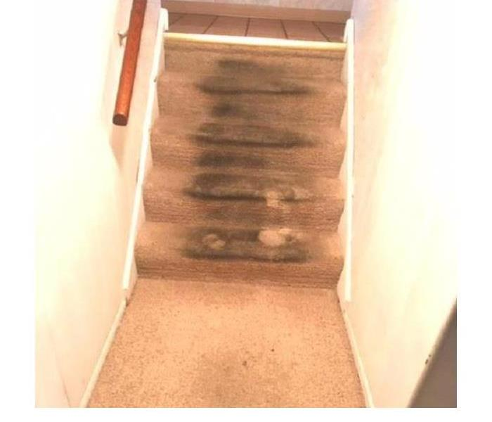 Carpet Cleaning after a Storm Before