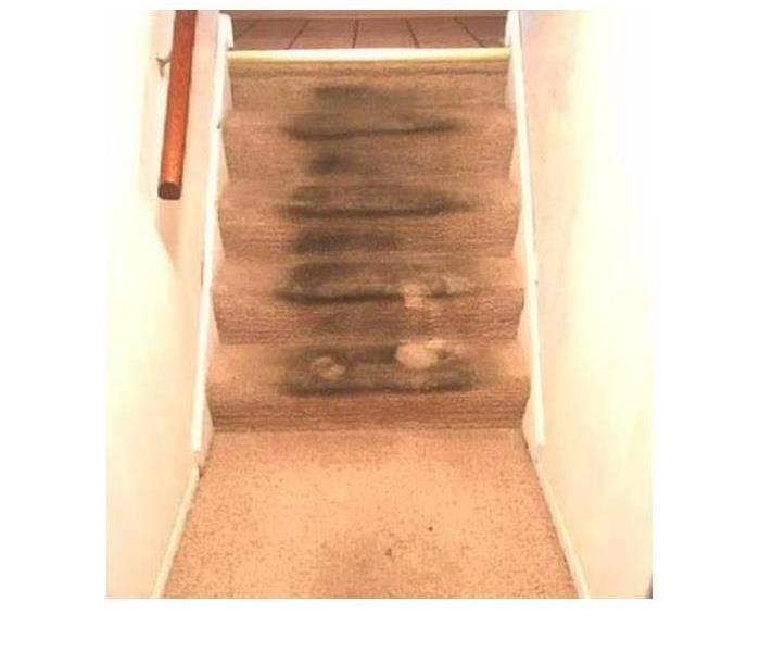 five step carpet staircase in home, covered in dirt and drenched with water