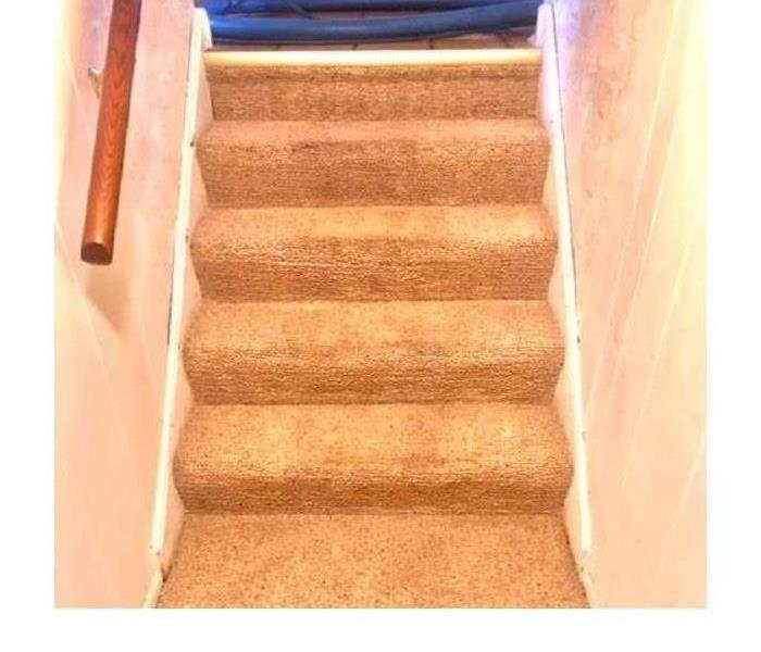 Five step carpet staircase clean and fresh looking