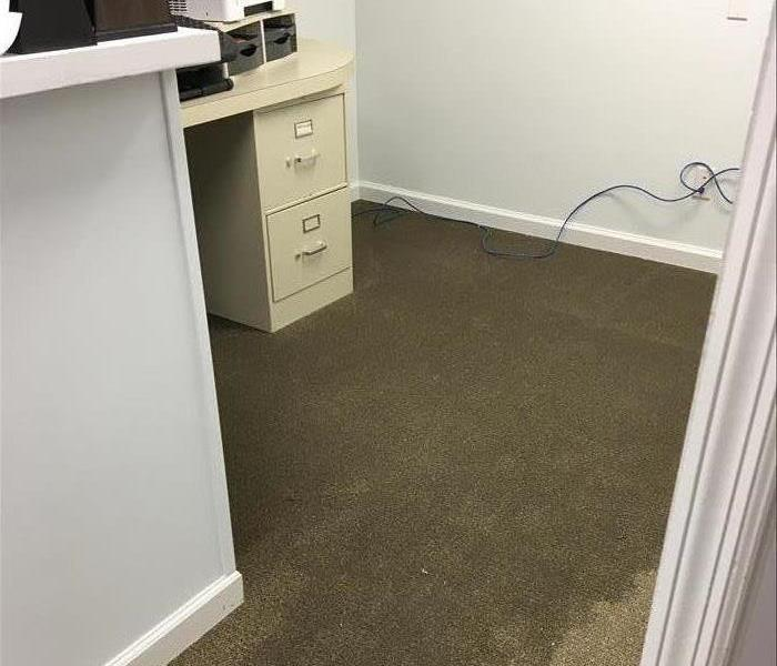Carpet in office saturated with water.