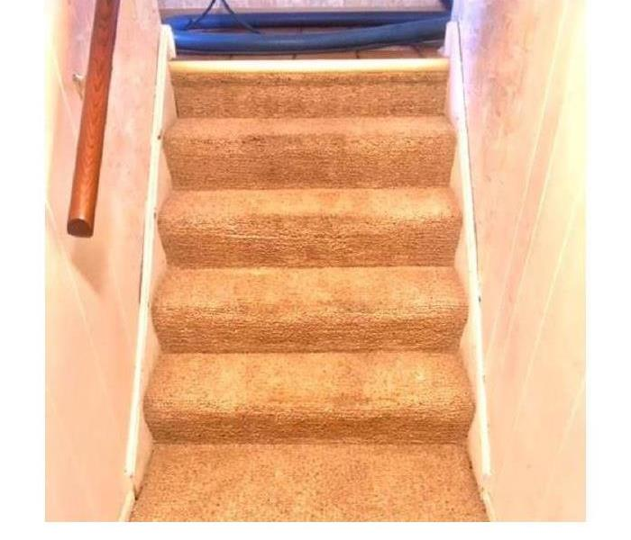 Carpet Cleaning after a Storm After