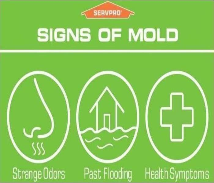 Green graphic describing three signs of mold