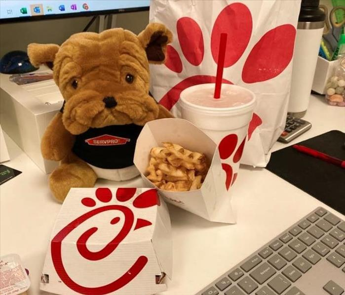 Bulldog plushie in SERVPRO shirt next to Chick-Fil-A Meal