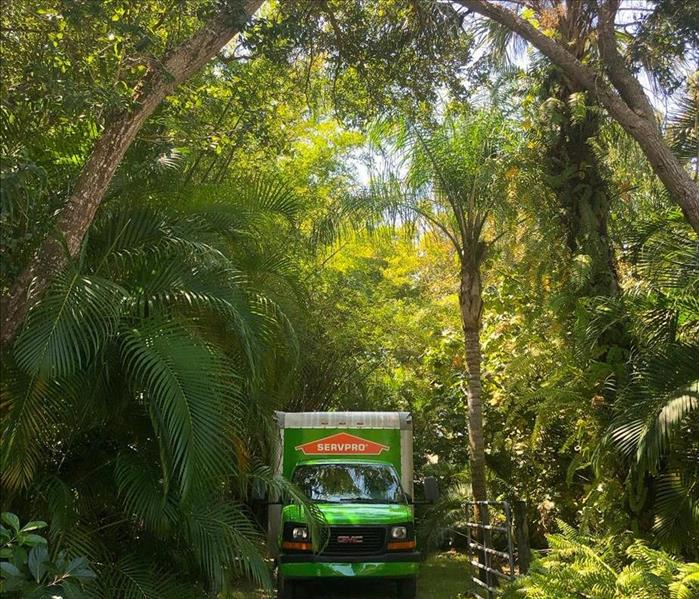 Bright green SERVPRO truck amongst the green trees and and bushes