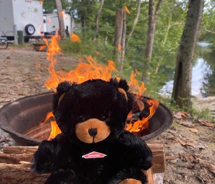 Black teddy bear sitting on a pile of wood in front of a campfire.