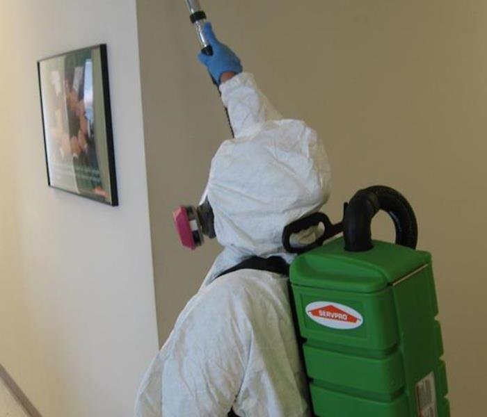 Mold Remediation Vero Beach Residents:  Follow These Mold Safety Tips If You Suspect Mold