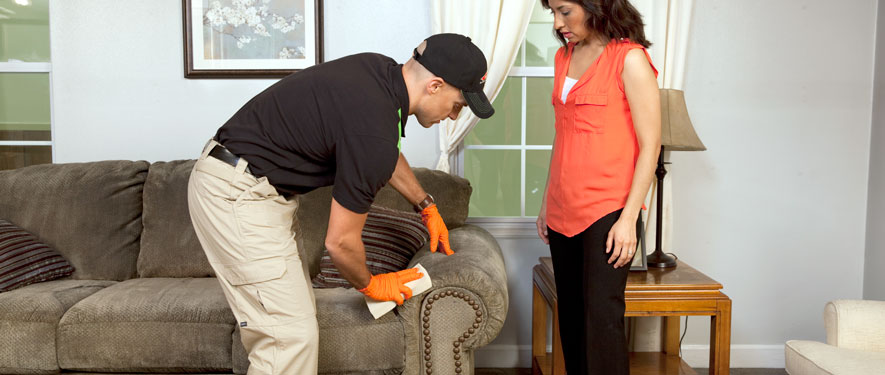 Vero Beach, FL carpet upholstery cleaning